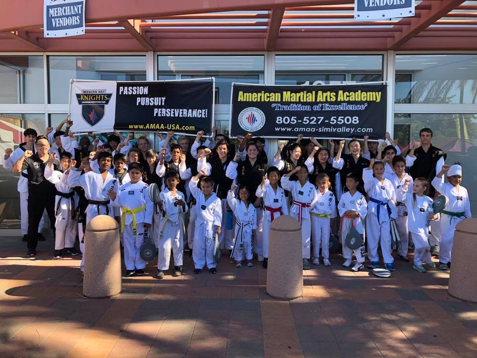 American Martial Arts Academy USA Gallery Photo Number 8
