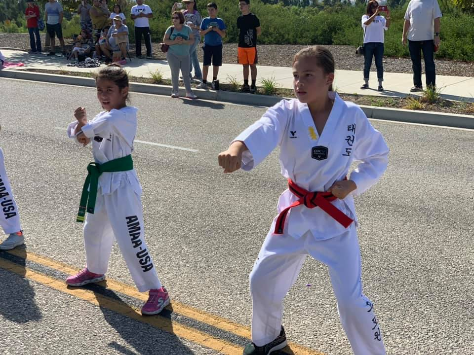 American Martial Arts Academy USA Gallery Photo Number 7