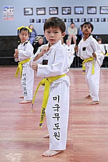 American Martial Arts Academy USA Gallery Photo Number 6