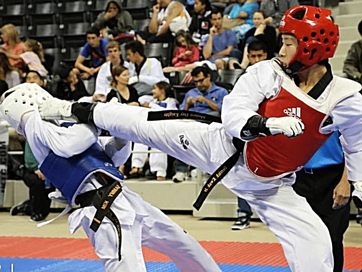 American Martial Arts Academy USA Gallery Photo Number 5