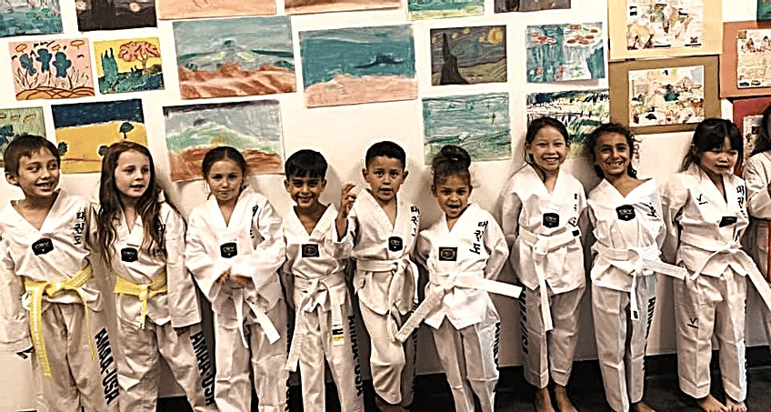American Martial Arts Academy USA Gallery Photo Number 4
