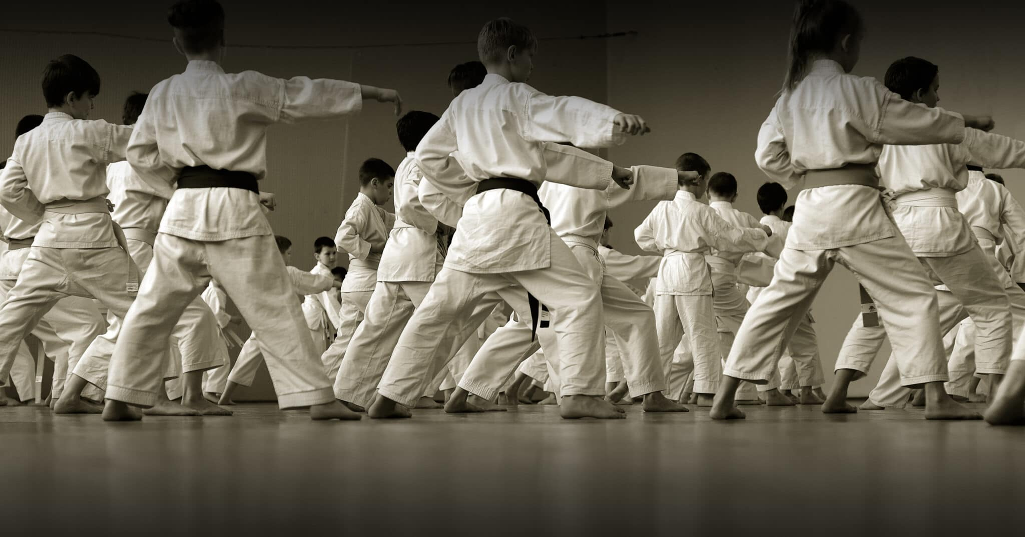 American Martial Arts Academy USA Special Offers